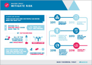 One page fact sheet on mitigating risk